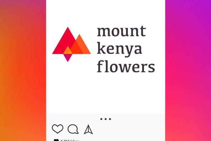 http://Mount_Kenya_Flowers_web2